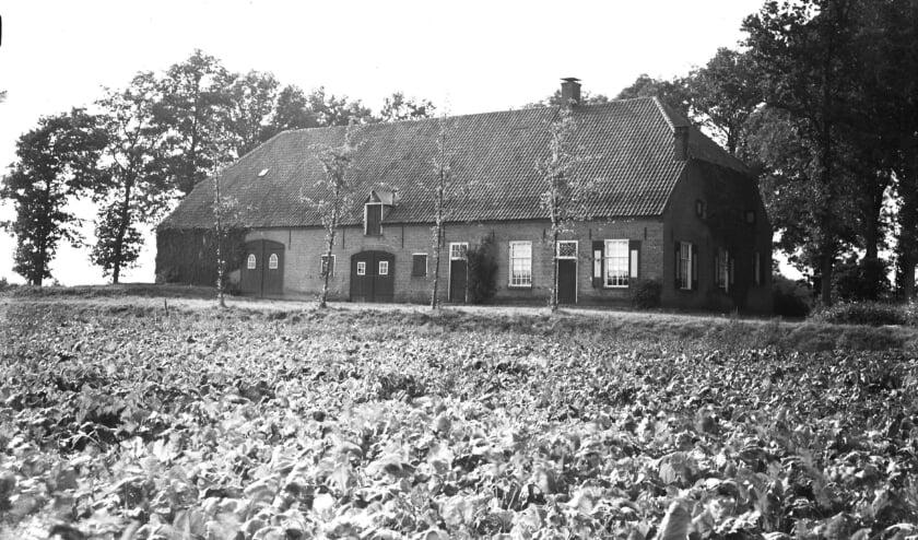 Boerderij langs de weg nabij Coudewater, gefotografeerd in 1946.  Foto: Fotopersbureau Het Zuiden, Collectie BHIC 1627-000767