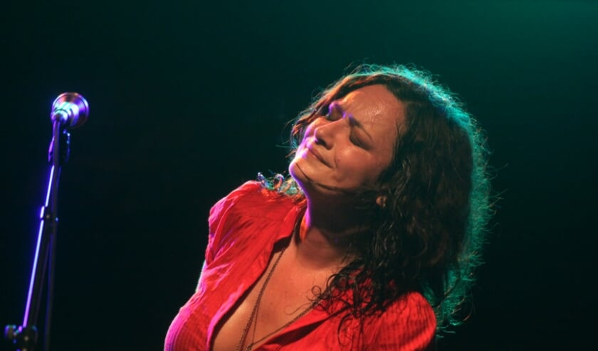 <p>Meena Cryle & The Chris Fillmore Band komt toch langs.</p>