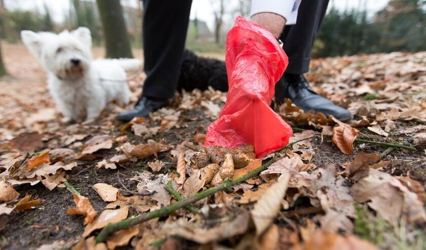 <p>Hondenpoep kan opgeruimd worden met een zakje. Foto: gemeente Zeist, Carolien Paasman.&nbsp;</p>