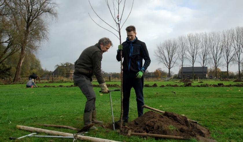 Het is onder andere mogelijk om fruitbomen aan te schaffen via de beplantingsactie voor het buitengebied van Angerlo en Babberich. (foto: PR