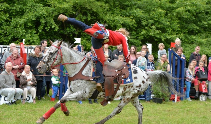 Het Hippinksterconcours is van een puur paardensportevenement uitgebouwd tot een compleet event, maar de pony's en paarden blijven alle aandacht opeisen. Foto: Hippinkster Hattem