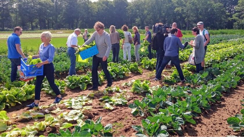 Hopelijk staat de derde Herenboerderij straks in Helmond of omgeving.