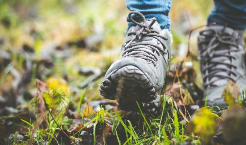 <p>Hoewel Natuurmonumenten blij is met de belangstelling voor de natuur, is de hoop wel dat mensen bewuster en met meer respect omgaan met de natuur.</p>