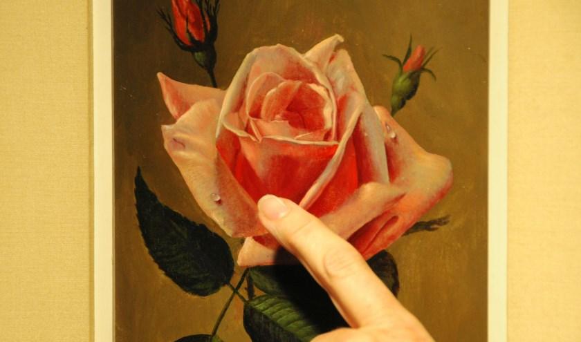 De 'Roze roos' van Jan Voerman junior. Dit exemplaar is haast zeldzaam gedetailleerd weergegeven. (foto: Voerman Museum Hattem)