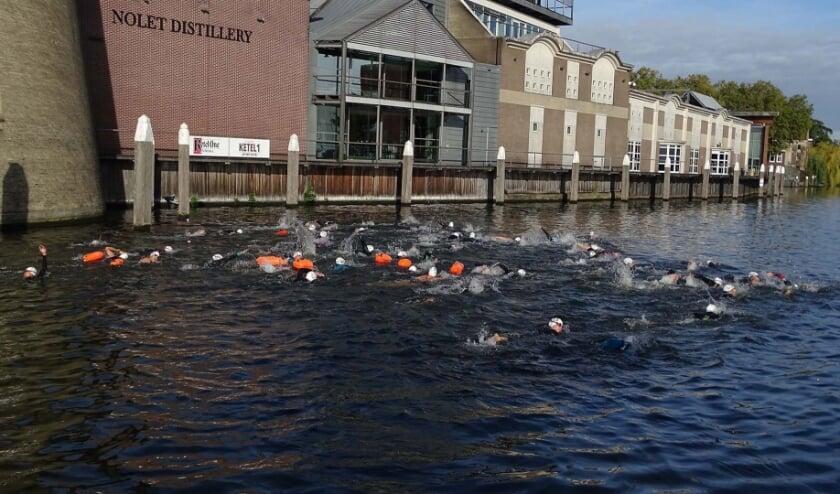 Ook dit jaar start de Branders Zwemtocht in de Buitenhaven voor de deur van Nolet Distillery. Alleen wordt het geen massastart. (Foto: PR)