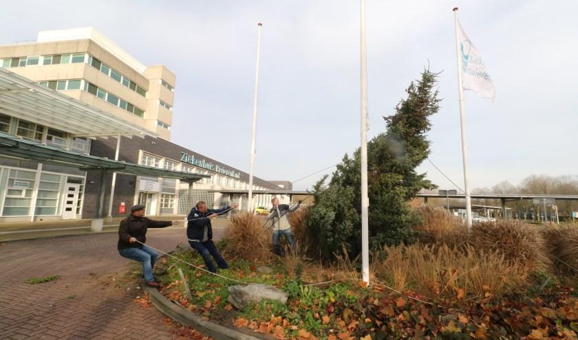 Dit jaar een grote kerstboom waar de 20.000 lampjes in worden gehangen.