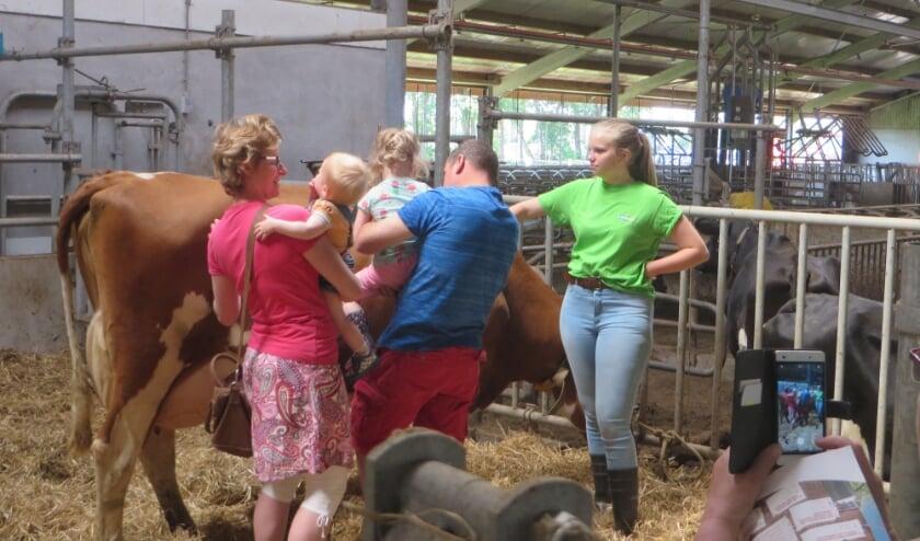 De rondleidingen bij de melkveebedrijven worden gewaardeerd. (Foto: Dini Aalpol)