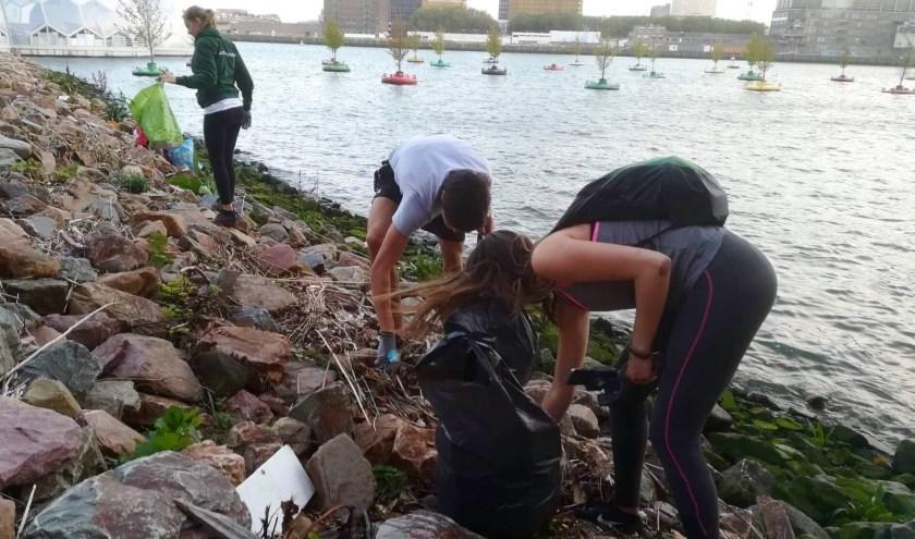 Deelnemers van de 'Run Against Waste' aan de slag in de Rijnhaven.