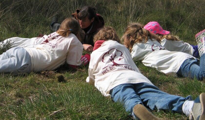<p>Voor het natuurbelevingsproject Het Bewaarde Land is IVN op zoek naar vrijwilligers die kinderen willen begeleiden in de natuur.</p>
