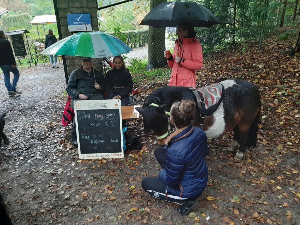 Veel regen maar toch ponyrijden voor 2 euro door Stal Carree uit Zeist.  © DPG Media