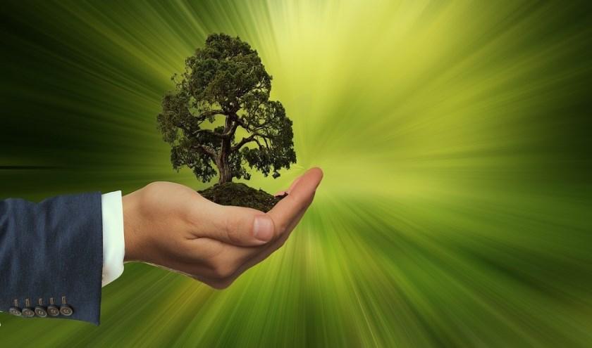 Stichting Satya Dharma introduceert de duurzaamheidsprijs in Hoogvliet.