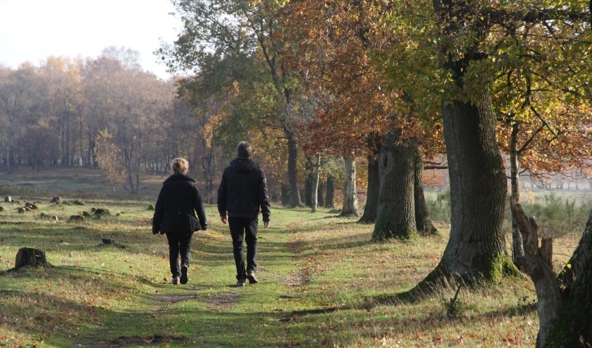 Stichting Het Utrechts Landschap beheert ruim 5.759 hectare natuur in de provincie Utrecht, bijna alles in eigendom.