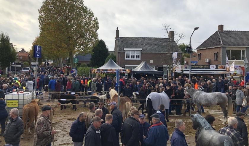 Vanwege het coronavirus gaat de paardenmarkt dit jaar niet door. Vorig jaar werd nog het 300-jarig bestaan van de paardenmarkt gevierd.
