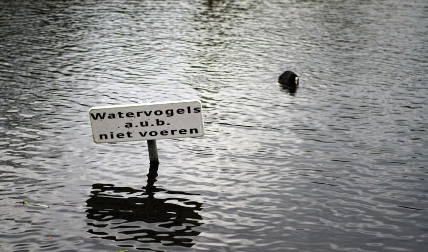 De gemeente probeert o.a. door het plaatsen van borden het voeren van watervogels te ontmoedigen. Foto; Robbert Roos