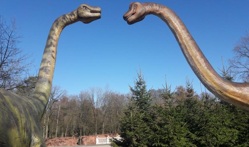 Het voormalige ZooPark Metelen is helemaal omgetoverd tot Dino Zoo Metelen. Op Goede Vrijdag is de opening.