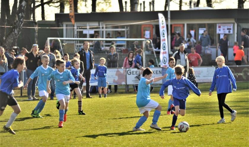 Foto: gertbudding.nl