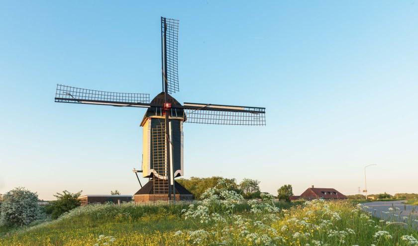 De molen in Batenburg.