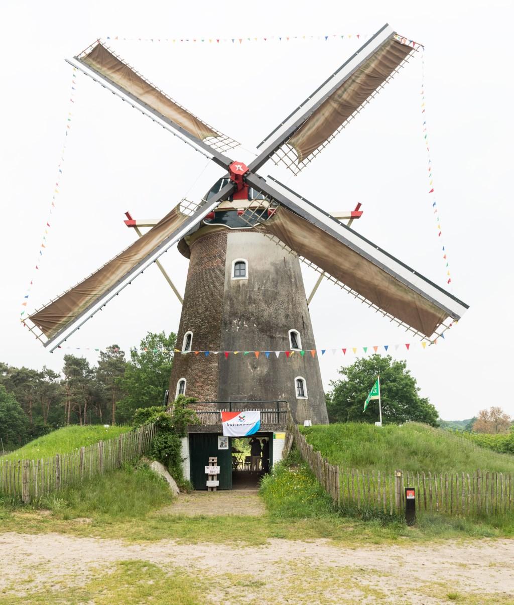 De molen in Hernen. Ton Rothengatter © DPG Media