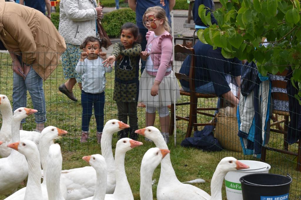 Enters Erfgoed houdt jaarlijks de traditionele ganzenmarkt, maar dit jaar bleef het midden mei rustig in het dorp.  (Foto: Van Gaalen Media)  © DPG Media