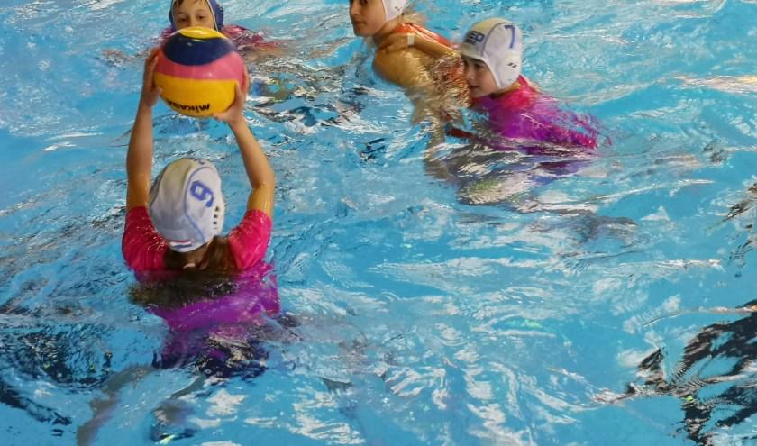 Waterpolo met het Nederlandse dames waterpoloteam.