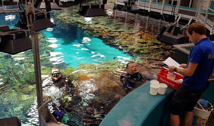 Sinds 2010 zijn er in totaal 2575 in Burgers' Ocean gekweekte koralen aan Europese collega's geschonken.