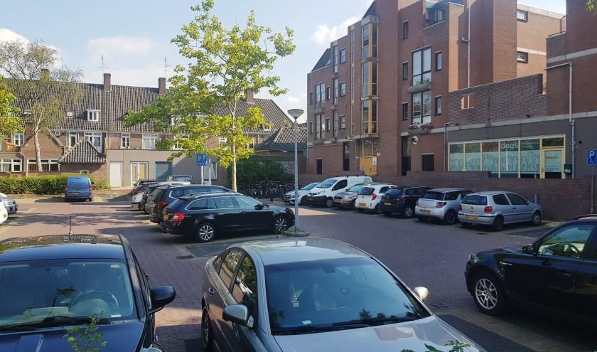 Rond het Plantsoen zijn de parkeerplaatsen meestal goed gevuld. (foto: Kees Stap)