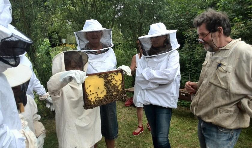 De Open Imerijdagen geven een kijkje in de wereld van de bijen.