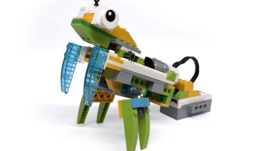 Op woensdag 18 september wordt er tweemaal een LEGO-middag gehouden in de bibliotheek van Zevenaar. (foto; PR)