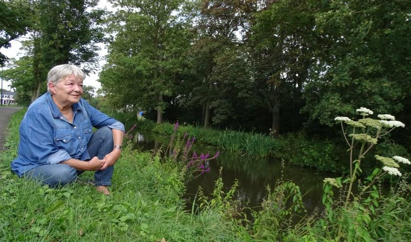 Trudie Scherpenzeel heeft een aantal mooie plekjes uitgekozen in Linschoten. Hier aan de Engherzandweg langs het water