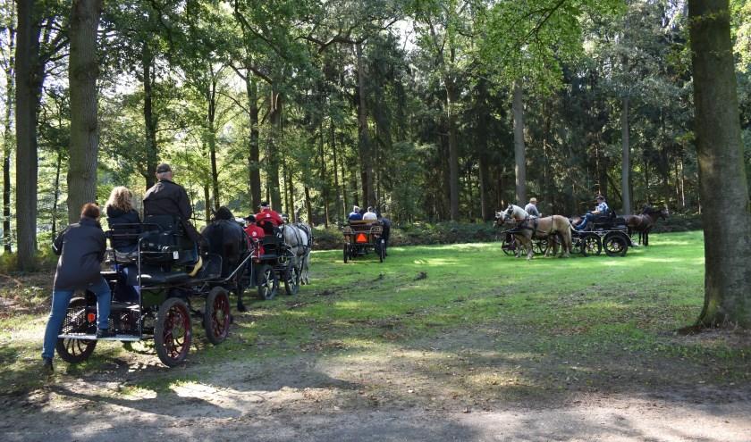 De fraaie aanspanningen in de mooie natuur van Het Groene Woud.