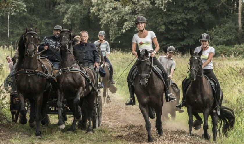 Aangespannen rijtuigen of paard en ruiter (het 'rijden onder de man'), iedereen geniet van het fraaie parcours van de spectaculair fraaie Klompenrit door Het Groene Woud.