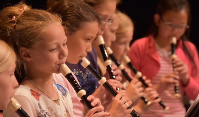 De cursus Algemene Muzikale Vorming (AMV) is een ideale voorbereiding op de instrumentale lessen die later gevolgd kunnen worden.