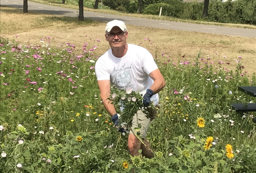 Initiatiefnemer Erik Willems in een bloemenveld.