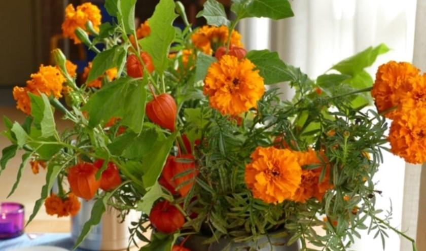 Oranje bloemen werden tijdens de oorlog het stille verzet genoemd.