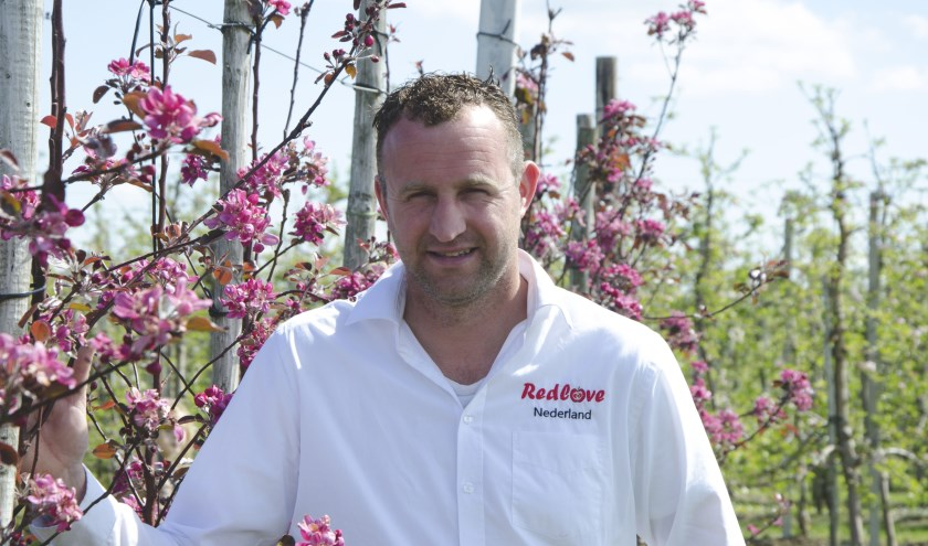 Buiten in de boomgaard, ver weg van de computer, geniet Jacco Merkens van het boerenbestaan.