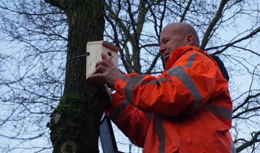 Groenmedewerker Ruben hangt een nestkastje op.