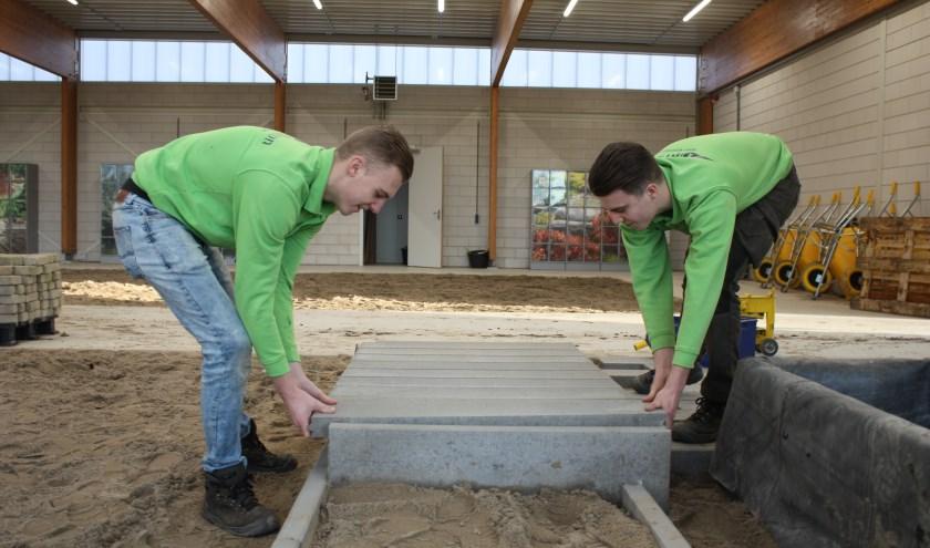Thijs en Guus aan het werk