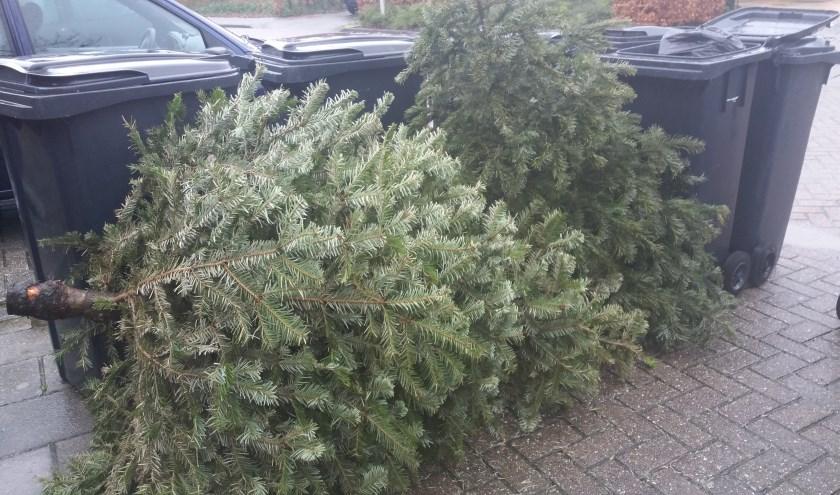 De kerstbomen moeten niet, zoals hier, samen met het restafval worden weggegooid. Foto: Writing4U.nl