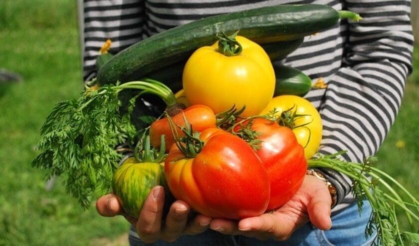 <p>De hobbytuinders van de Hoevenronde dragen op een biologische en duurzame manier bij aan de biodiversiteit en eigen voedselvoorziening. </p>