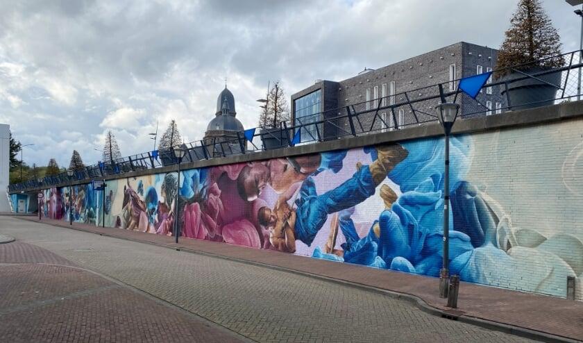 <p>Een van de murals, die Helmond een beetje mooier maken.</p>