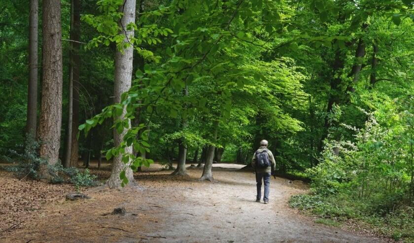 <p>Utrechts Landschap beschermt al ruim 90 jaar natuur in de provincie.</p>