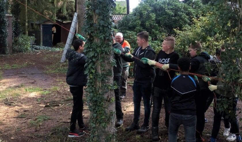 <p>Een aantal leerlingen kreeg instructie van de docent bij het vellen van een dode boom.</p>