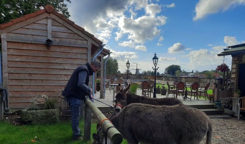 <p>De eerste wandelingen vanuit de Theetuin naar het Hulshorsterzand staan gepland op zaterdag 17 en/of zondag 18 oktober en zaterdag 24 en/of zondag 25 oktober. </p>