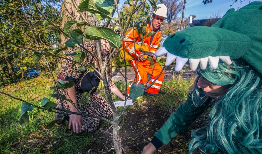 Actievoerders planten een fruitboom