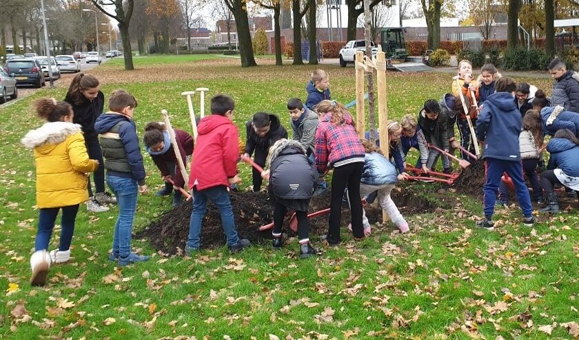 kinderen planten een boom