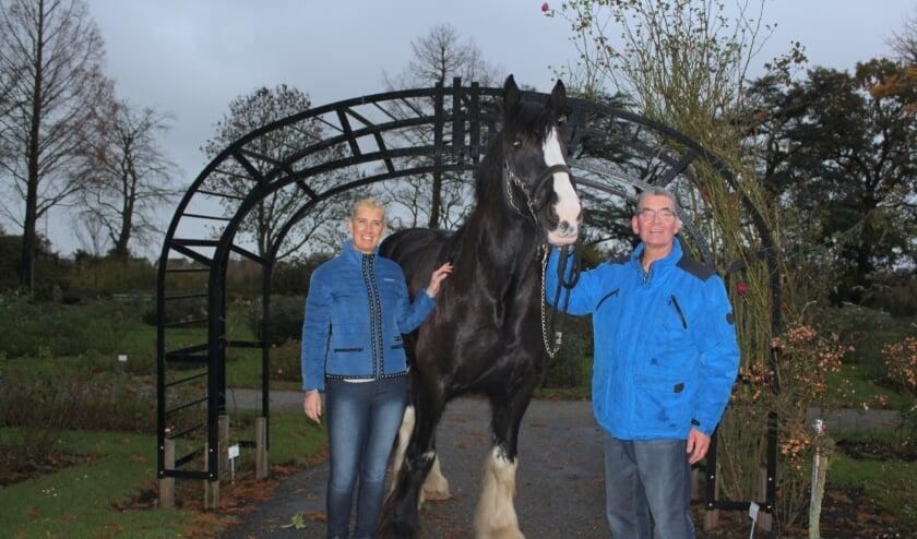 <p>Fred en Sylvia, hier met hun paard Buck, vonden elkaar door hun liefde voor paardeni. FOTO: Morvenna Goudkade</p>