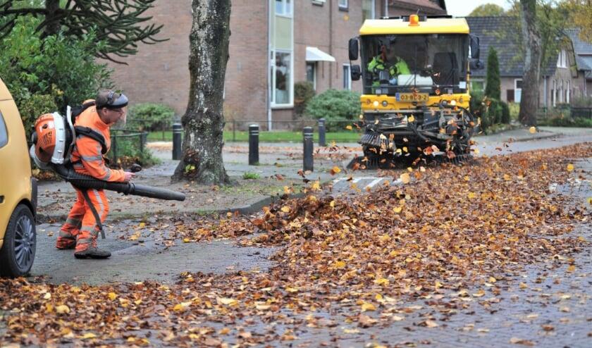<p>Foto: gertbudding.nl </p>