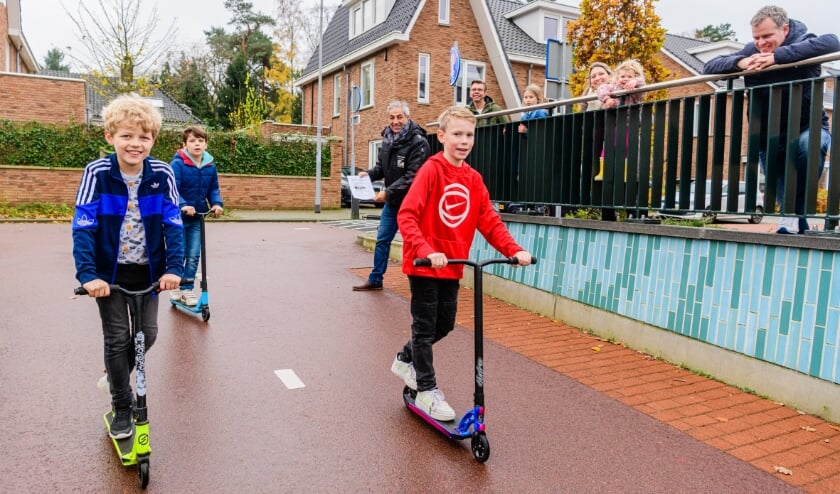 <p>Ruud en Stijn uit Den Dolder (allebei 9) willen heel graag een skatebaan in Den Dolder.&nbsp;</p>