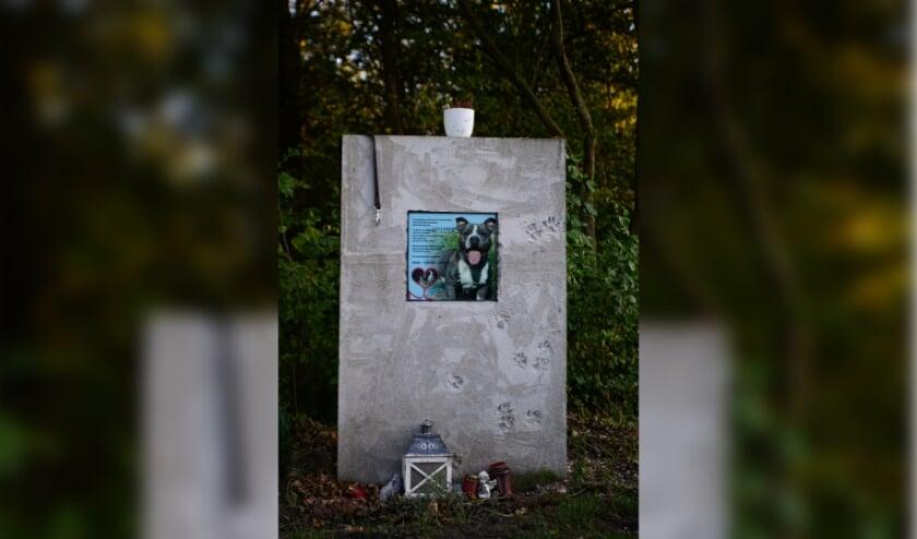 <p>Het monument wat is opgericht ter nagedachtenis aan de hond Batman.&nbsp;</p>