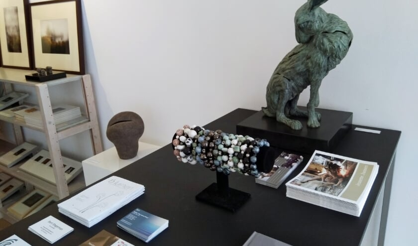 Pop Up Galerie Rhenen